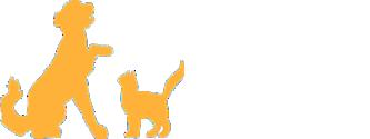 AMC Logo-transp-333×125